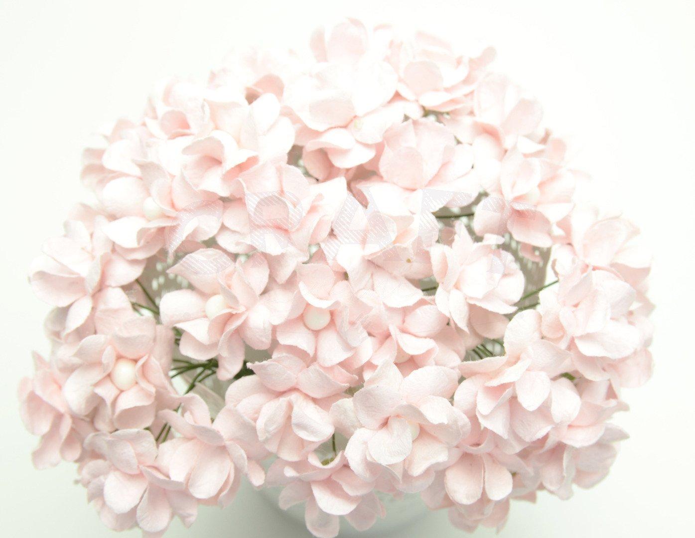 Filipinki Pale Pink Flowers 50pcs Kategorie Tematyczne Komunia